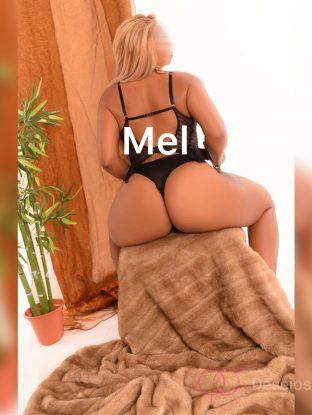 Mel (Constituição)